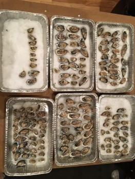 Hog Island Oyster Co., San Francisco, CA, USA photo-159593 Got Food Poisoning? Report it now