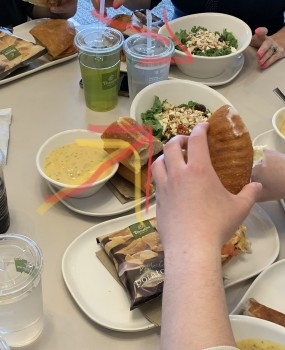 Panera Bread, Carlisle Pike, Mechanicsburg, PA, USA photo-178551 Got Food Poisoning? Report it now
